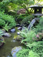 Japanese Garden 3 by Cynnalia-Stock