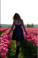 Tiptoe in the Tulips by ShannonCPhotography