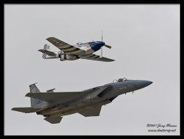 P51-F15 Eagle by Sp00ksMage