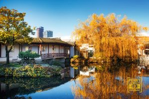 Chinese Garden by PenelopeT
