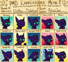 PMD Expressions Meme - Chalky by VibrantEchoes