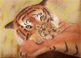 Tiger and cub by Itti