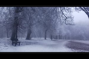 Winter I. by Sunnystorm