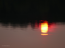 Hot summer reflection by Mogrianne
