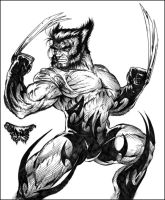 Tribal Wolverine by roo157