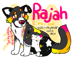 Wish X Genie Litter - Rajah by Ice-Flakes