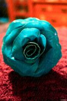 is it a rose? view three by lyssalove