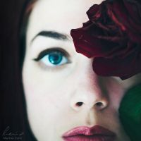 Rose by MarinaCoric
