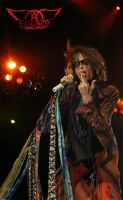 Steven Tyler - Aerosmith by tartleigh