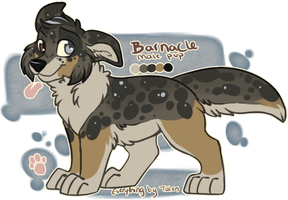 ADOPT: Barnacle **auction** OPEN by TalonEX