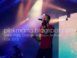 Chester (Orange Warsaw Festival) by pinkmarta182