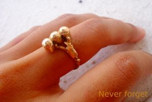 My grandmother's engagement's ring (l) by NagaOne-Chan