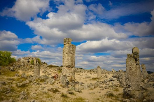 The Stone Forest BG by dianora