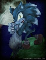 SNC-Werehog by Mikoto-chan