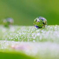 Droplet 45 by josgoh