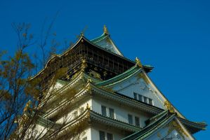 Osaka Castle - Detail by ricperry1