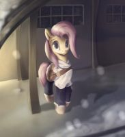 Fluttershy Gif by Rodrigues404