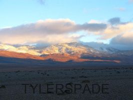 Another day in Paradise by Tylerspade