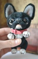 French bulldog with a pink collar by SulizStudio