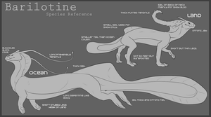Barilotine - Species Information sheet. by SlaveToTheMocha