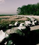 Rock Barrier by AyronHalcyon
