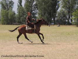 Hungarian Festival Stock 101 by CinderGhostStock