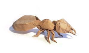 Origami Ant by thehermitdesign