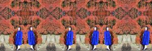 Mrs A* Stands Back In Amazement Stereo Triptych by aegiandyad