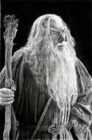 Gandalf by francoclun