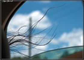 Windows down, hair in wind by AnimaSoucoyant