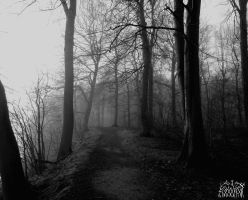The woods of thousand tears by Skoggangr