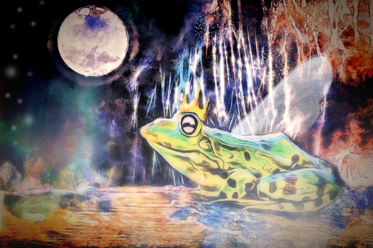 The Frog King by DravenBlackthorne