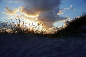 Dune at Sunset by FeliDae84