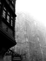 Cathedrale de Strasbourg by justinesushi