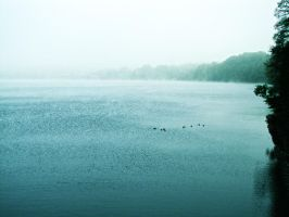 The Fog over the Lake by UglyKidAndy
