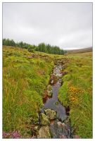 Wicklow mountains 4 by martinkaluza