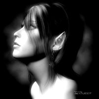 Portrait of a Half Elf by ToriB