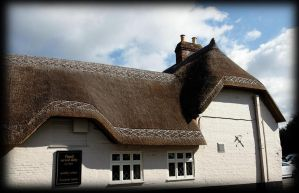 thatch by awjay