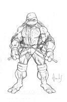 TMNT Raph by UltimateRubberFool