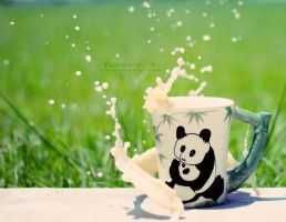 Panda Splash by YasminNich