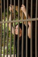 Caged Taylor 03 by LinzStock