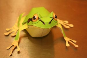 Green Tree Frog by FuroMustela