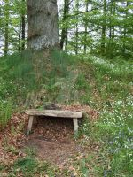 Wee Bench by rosequartz