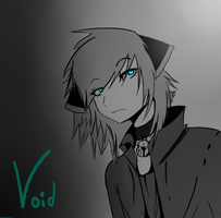 Void by LaLaLaMeTo