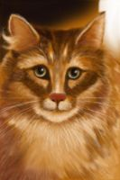 Cat Gradpaint by SCOTTERIGSBY