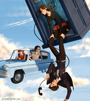 Of Timelords and Wizards by Riding-Lights