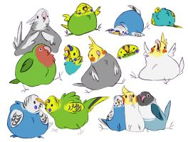 fat burds by unbadger