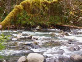 Wallace River by cjosborn
