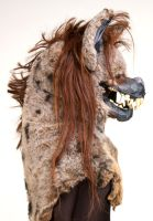 Hyena: View 2 by MonicaMcClain