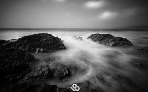 Mist In Motion by l8